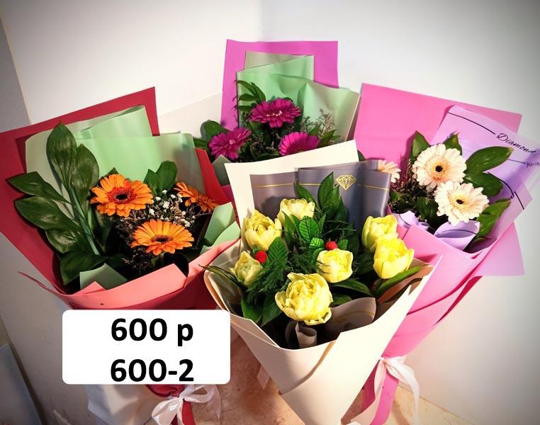 600-2.jpg